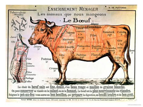 rundvlees-schematische-weergave-van-de-verschillende-vleesdelen